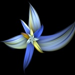 This delicate blue and yellow blossom strongly resembles a day lily, violet, or orchid, but it's entirely the result of mathematical number crunching!